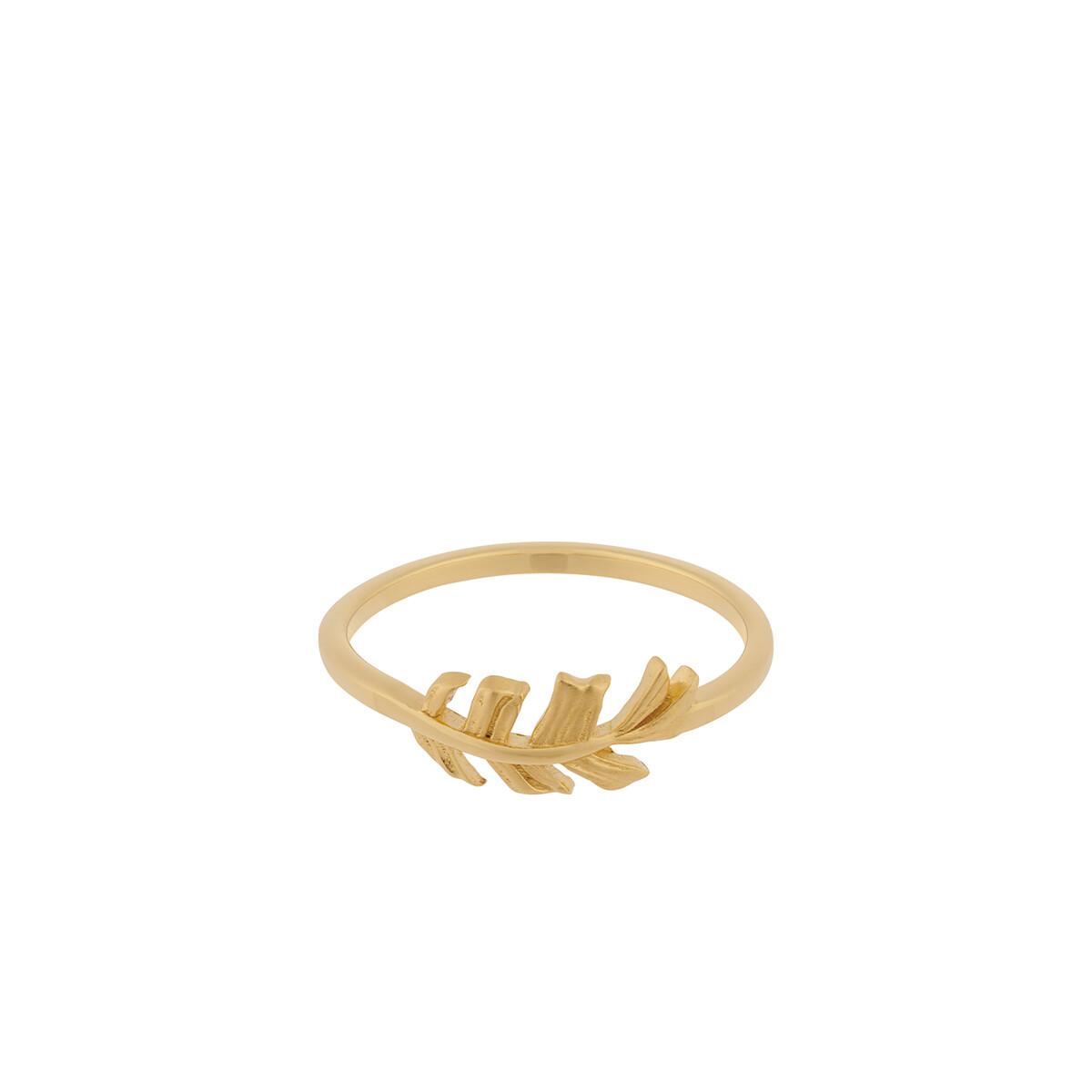 Pernille Corydon - Leaf Ring Gull