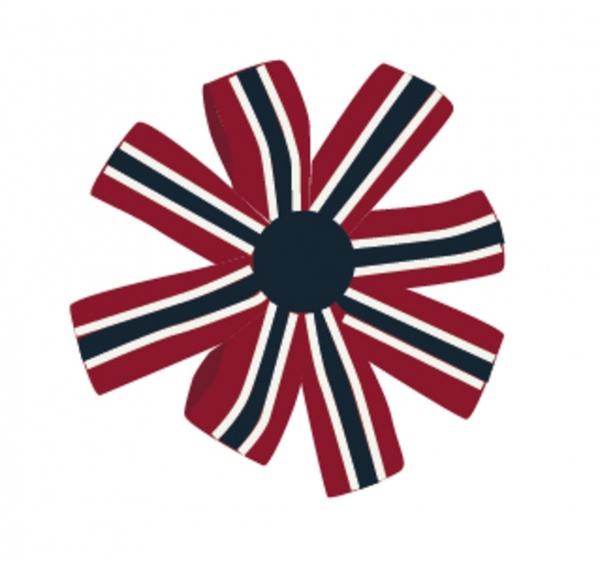 Bilde av NAME IT - HÅRSPENNE 17. MAI RUND