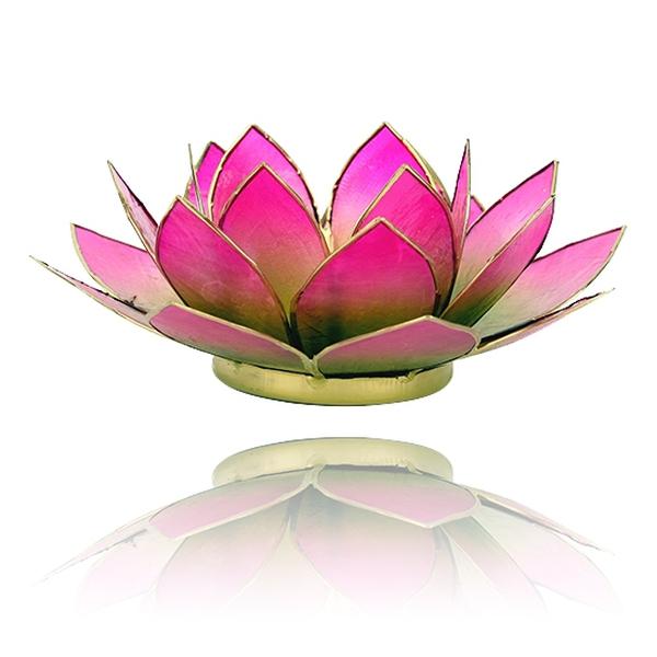 Bilde av Lotus Lys Grønn/Rosa