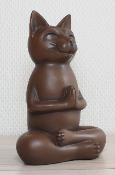 Bilde av Katt i meditasjon