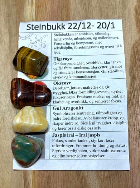 Bilde av Steinbukken Stenene
