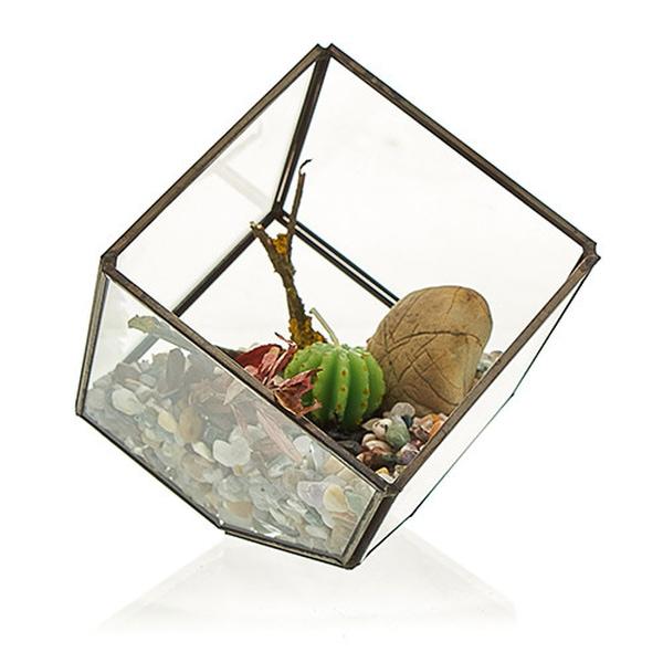 Bilde av Glass Kube Terrarium
