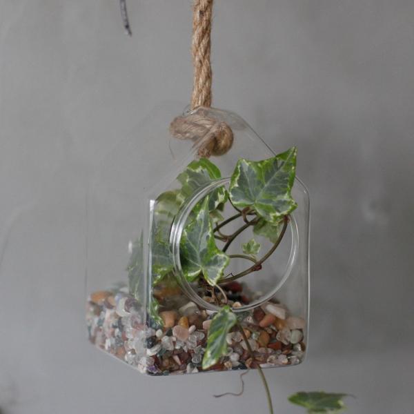 Bilde av Glass Hus Terrarium Hengende
