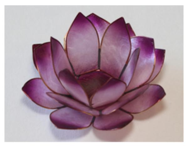 Bilde av Lotus Lys Purple