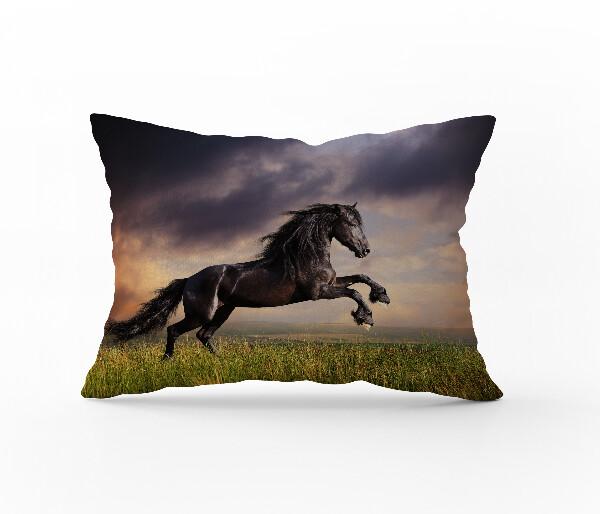 Bilde av Örngott Wild Stallion 50x60