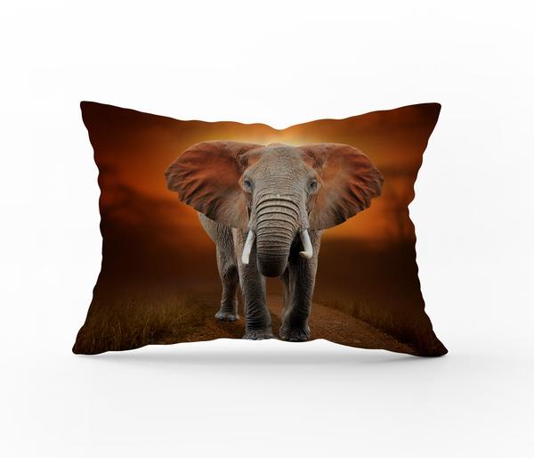 Bilde av Örngott Elephant 70x100