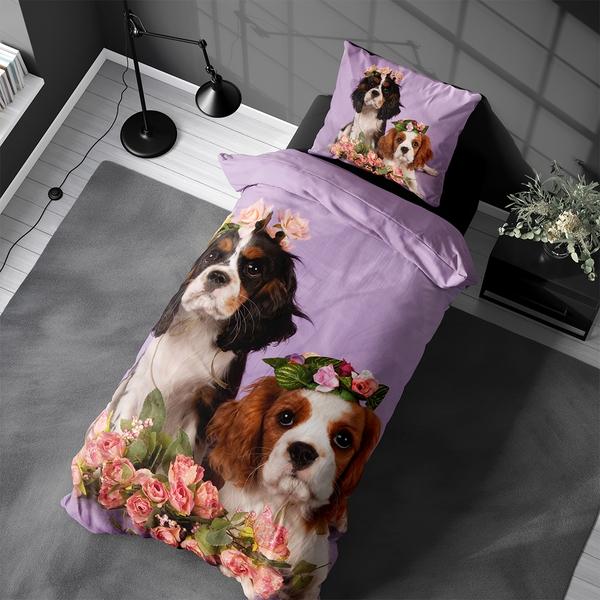 Bilde av Påslakanset Cavalier Puppies
