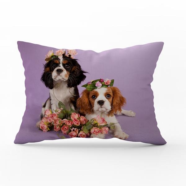 Bilde av Putetrekk Cavalier Puppies 70x100