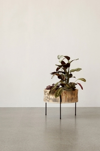 Bilde av Menu Umanoff Planter, 32,5 cm