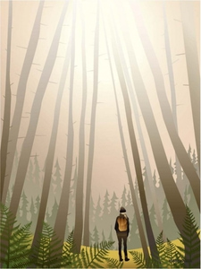 Bilde av VisseVasse Into The Woods