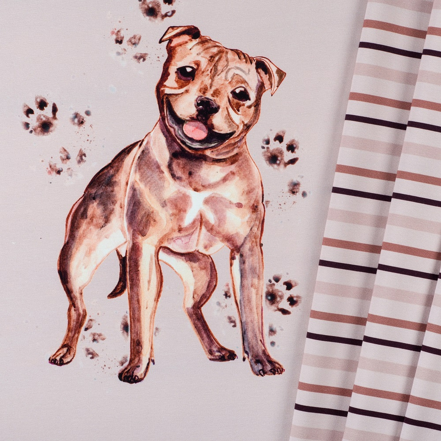 Panel French terry Staffordshire bull terrier