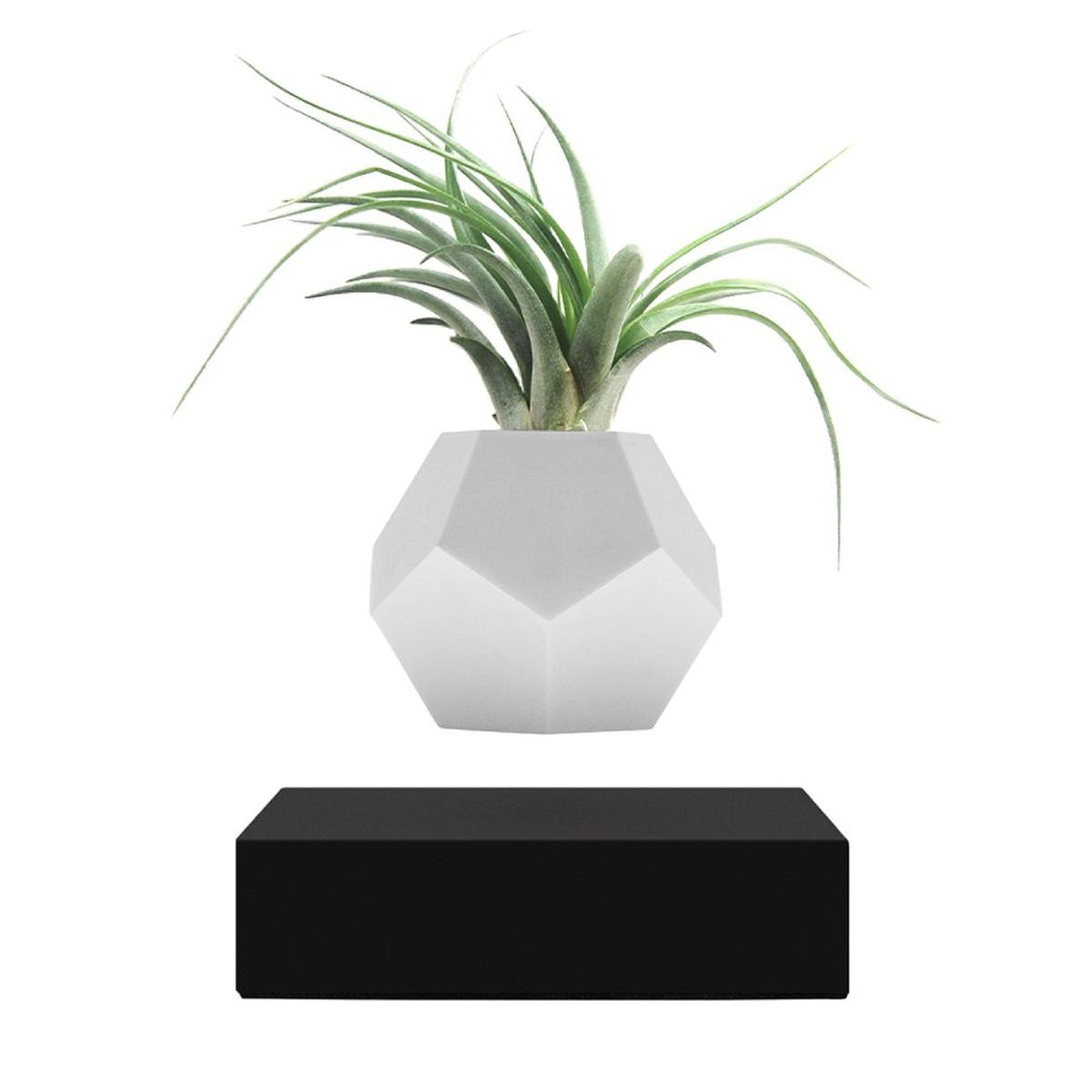 Flyte Lyfe planter black
