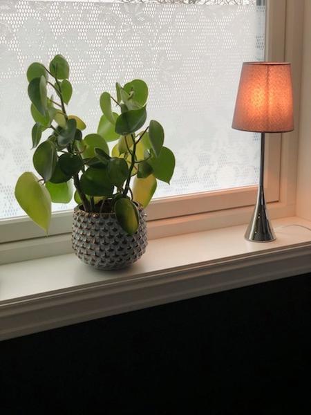 Bilde av Blonderomantikk vindusfolie
