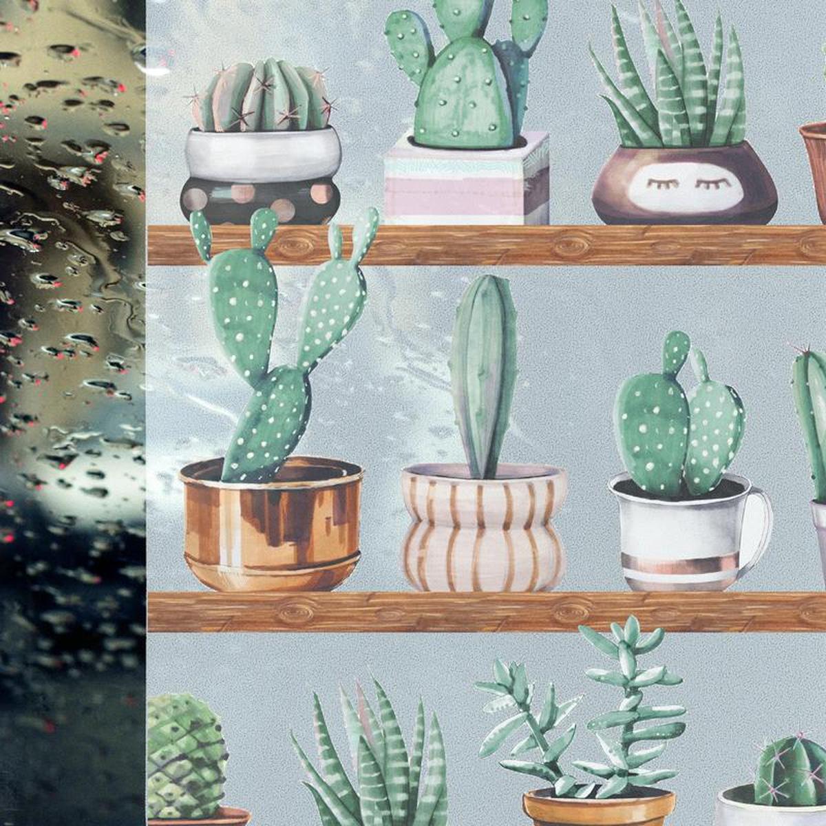 Vareprøve: Static Cacti vindusfolie