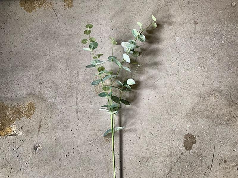 Grønn eucalyptus 84 cm