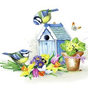 Bilde av Servietter It is springtime