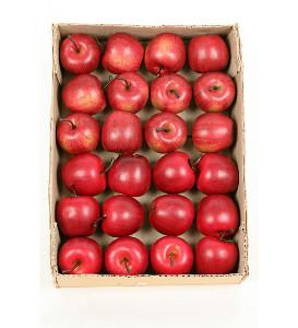 Bilde av Nydelige epler