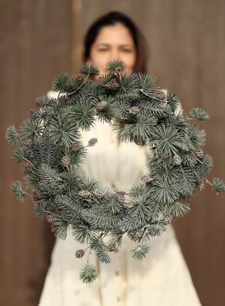 Bilde av Mr Plant - Grankrans med frost og kongler