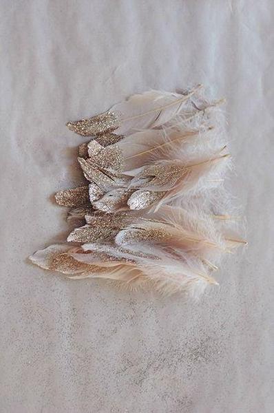 Bilde av Feather Study No6