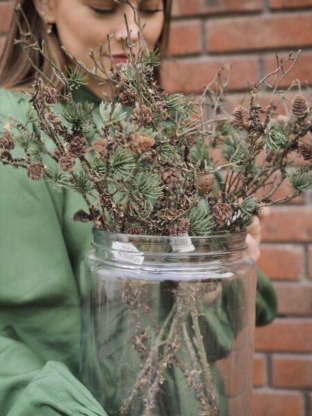 Bilde av Mr Plant - Lerkekvist - 50 cm