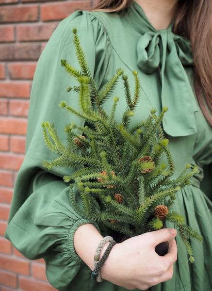 Bilde av Mr Plant - Lite Grantre  med kongler - 45 cm